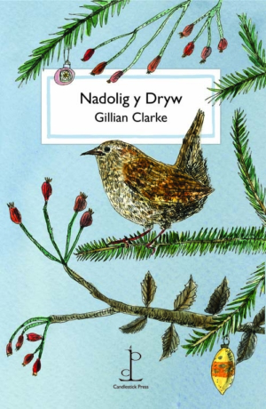 Nadolig y Dryw / The Christmas Wren